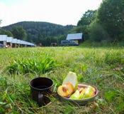 在露营地的早餐 图库摄影