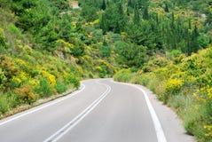 在青山的柏油碎石地面路与花 图库摄影