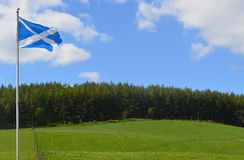 在青山的苏格兰旗子 免版税库存图片