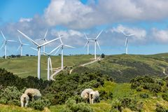 在青山的风轮机与绵羊群 免版税库存图片