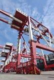 在青岛,中国港的巨型的起重机  免版税库存图片