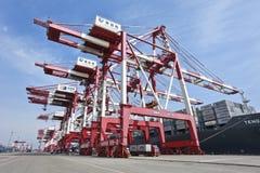 在青岛,中国港的巨型的起重机  库存图片
