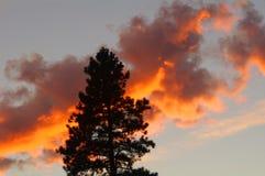 在青玉山的日落,蒙大拿 免版税图库摄影