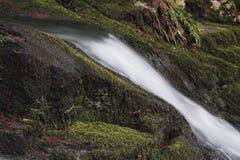 小小瀑布和青苔盖了岩石 免版税库存照片