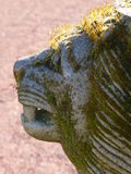 在青苔和地衣报道的狮子雕塑 免版税图库摄影