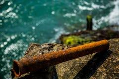在青苔和海背景的生锈的管子  库存图片