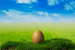 在青苔的一个鸡蛋在绿色幻想草甸 库存照片