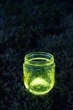 在青苔的发光的瓶子 免版税图库摄影