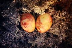 在青苔的复活节彩蛋 库存照片