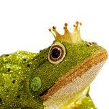在青蛙的典雅的被设计的金刚石在白色背景 免版税库存照片