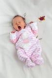 逗人喜爱的打呵欠的新出生的女婴 免版税库存图片