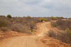 在非洲的风景的方式 库存图片