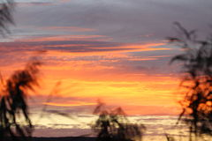 在非洲的日落 库存照片