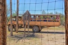 在非洲野生生物公园外面的一个徒步旅行队 库存照片