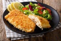 在面包渣和新鲜蔬菜分类的鲜美烤鱼片 免版税库存图片