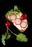 在面包片的萝卜和乳脂干酪 免版税库存照片