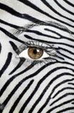 在面孔绘的斑马纹理 库存图片