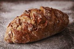 在面粉的核桃面包 库存图片
