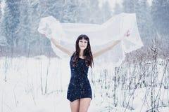 在面纱下的美丽的新娘在白色雪背景 免版税库存照片
