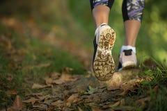 在鞋子的妇女脚在日落的一条森林道路 免版税库存照片
