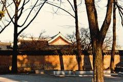 在韩文寺庙汉城的惊人的橙色日落光 免版税库存图片