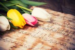 在音乐便条纸的郁金香 免版税库存图片