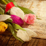 在音乐便条纸的郁金香 免版税图库摄影