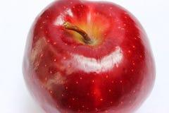 在顶视图的整个红色苹果 免版税图库摄影