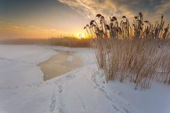 在顽童冻海湾的冬天风景  库存图片