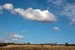 在领域上的天堂般的风景 库存照片
