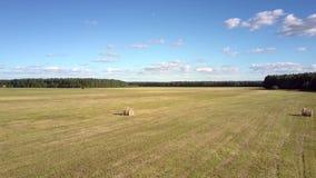 在领域上的空中行动与反对森林的干草捆 股票视频
