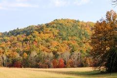 在领域和山显示的大胆的秋天颜色 免版税库存图片