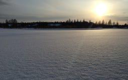 在领域和树的冬天日落 库存图片