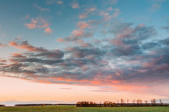 在领域或草甸的日落日出 在绿色地面的明亮的剧烈的天空 库存图片