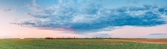 在领域或草甸的日落日出 在Gr的明亮的剧烈的天空 免版税库存图片