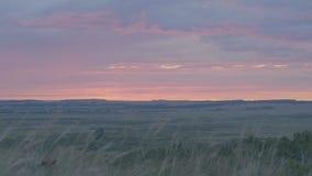 在领域或草甸的自然日出 明亮的剧烈的天空和黑暗的地面 在风景五颜六色下的乡下风景 免版税库存图片