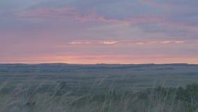 在领域或草甸的自然日出 明亮的剧烈的天空和黑暗的地面 在风景五颜六色下的乡下风景 库存照片