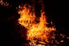在领域烧伤胡扯五谷的-印度的火 免版税库存照片