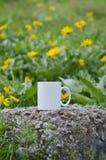在领域的一个空白的加奶咖啡杯子 库存照片