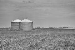 在领域的两个谷粮仓 免版税库存图片