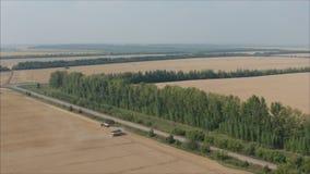 在领域的两台收割机 收获麦子在夏天 运作在领域的两台红色收割机 E 影视素材