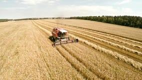 在领域的农业机器 技术工作在领域的 股票视频