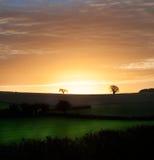 在领域的农村早晨日出 免版税库存图片