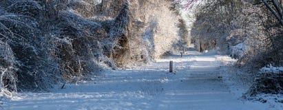 在领域的冬天 免版税图库摄影