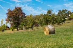 在领域的卷干草沿浪漫路魏克尔斯海姆,德国 免版税库存照片