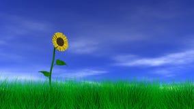 在领域的向日葵 向量例证