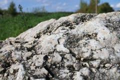 在领域的固体岩石 库存照片