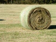 在领域的大圆的干草捆 免版税图库摄影