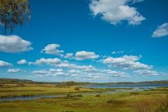 在领域的天风景 免版税库存照片