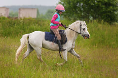 在领域的女孩确信的疾驰的马 免版税图库摄影